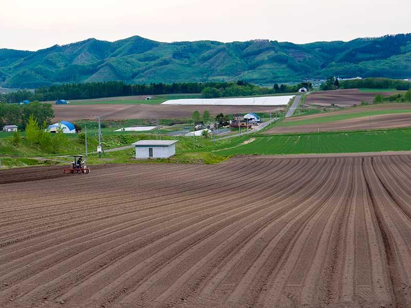 北海道的風景